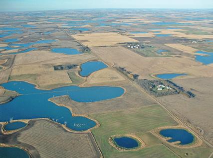 Midwest_environment_habitat