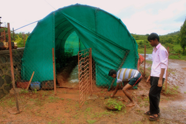 The student-built greenhouse at Mangaon School