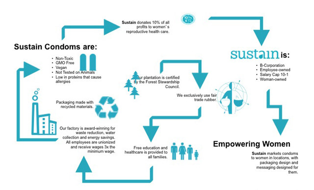 the nonprofit survival guide a strategy for sustainability
