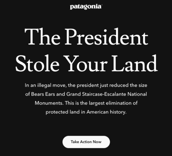 take for example the outdoor clothing company patagonia a brand that inspires activism with its vocal and timely environmental conservation campaigns