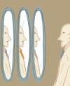 Monk, Architect, Diplomat - Thumbnail