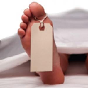 Cadaver Commerce - Thumbnail