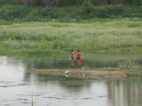 Environment_Bangalore